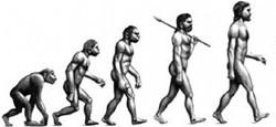 Теория эволюции: а есть ли доказательства?